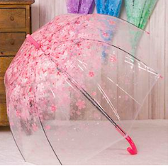 Top 10 Designer Umbrellas To Buy In 2018 for Indian Monsoons – Beat the Rains in Style