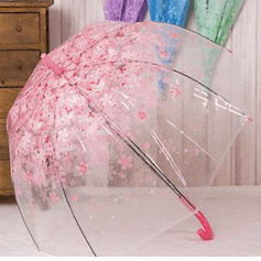 Top 10 Designer Umbrellas To Buy In 2019 for Indian Monsoons – Beat the Rains in Style