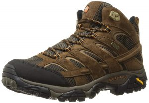 Merrell Moab Waterproof Shoes