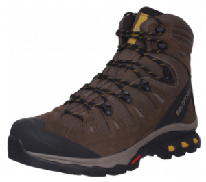Salomon Quest Waterproof Shoes.