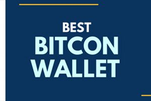 Choosing The Best Bitcoin Wallet In India: Top 8 Bitcoin Wallets